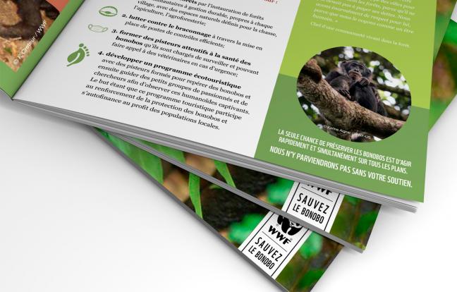Folder WWF